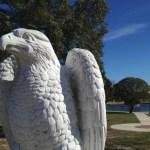 confederate park jacksonville