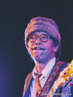 Kid Congo Powers And The Pink Monkey Birds