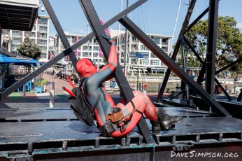 Deadpool cosplay during the National Convention of the Photographic Society of New Zealand