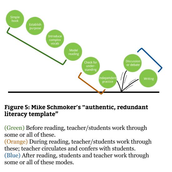 Fig 5 - Schmoker literacy template (1)