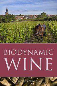 biodynamic-wine-photo