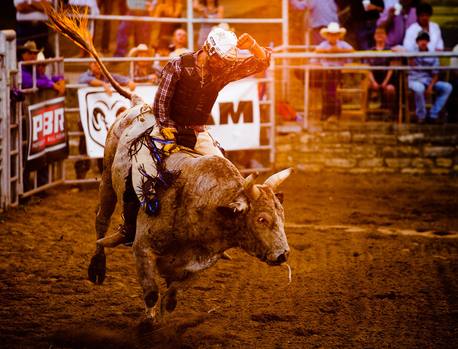 Sunset Bull Rider Dave Wilson Photography