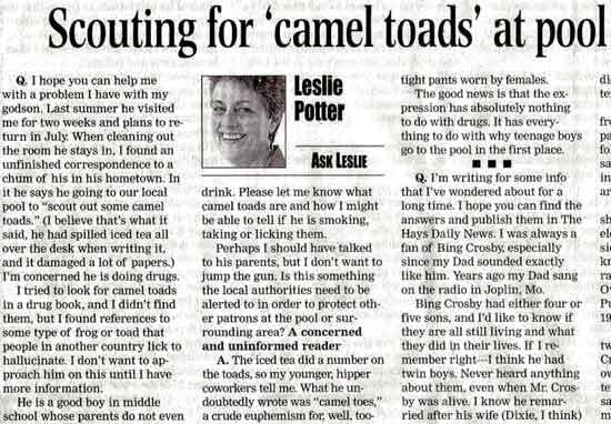 Camel Toads