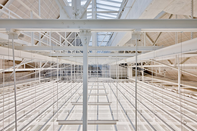 Albertinum  Fotografien von David Brandt