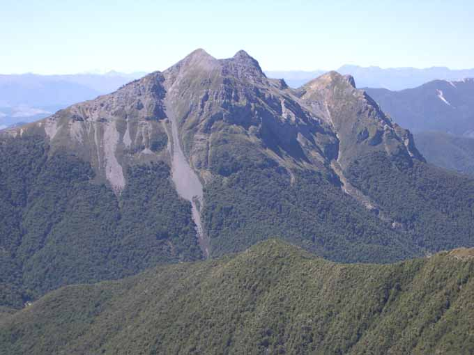 Image result for mt patriarch