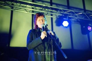 Concert Photographer Belgium