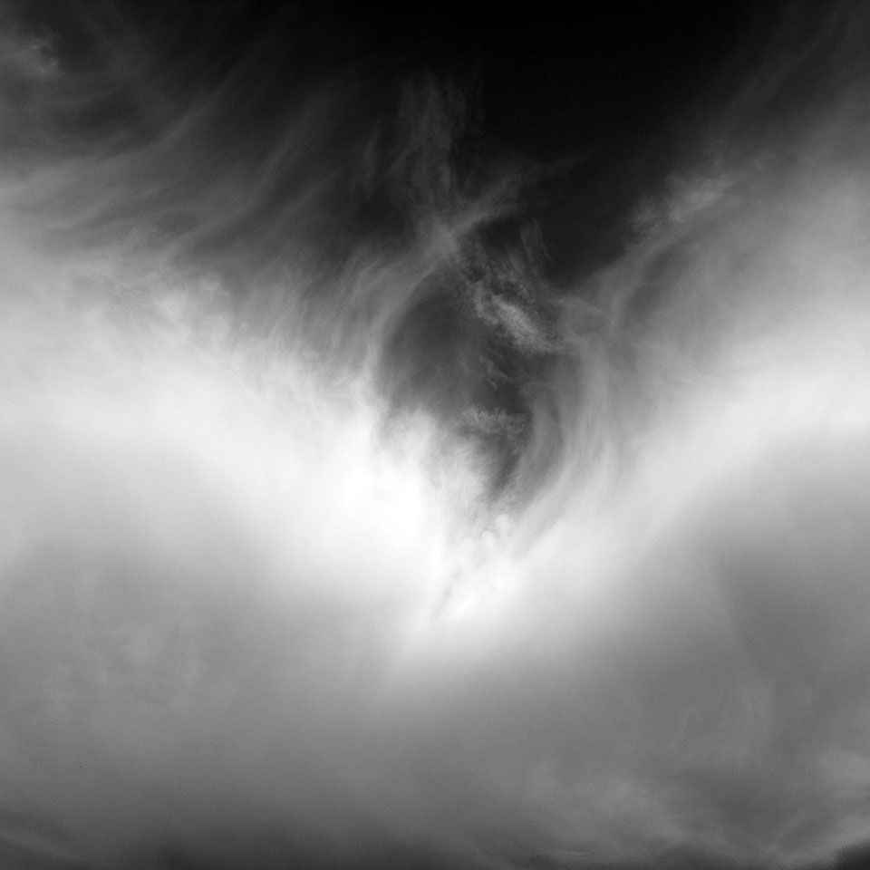 Diurnal Affair by David Bernie. Daily Photography.