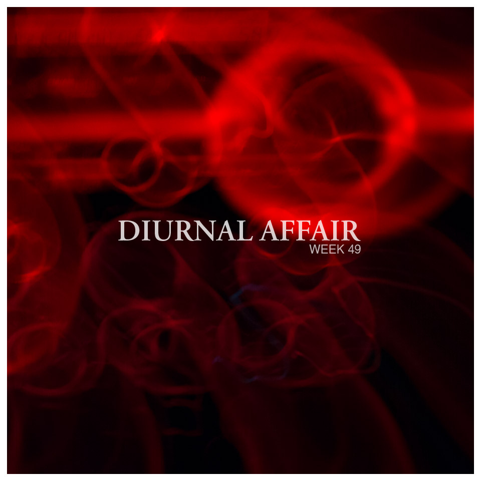 Diurnal Affair Photography by David Bernie