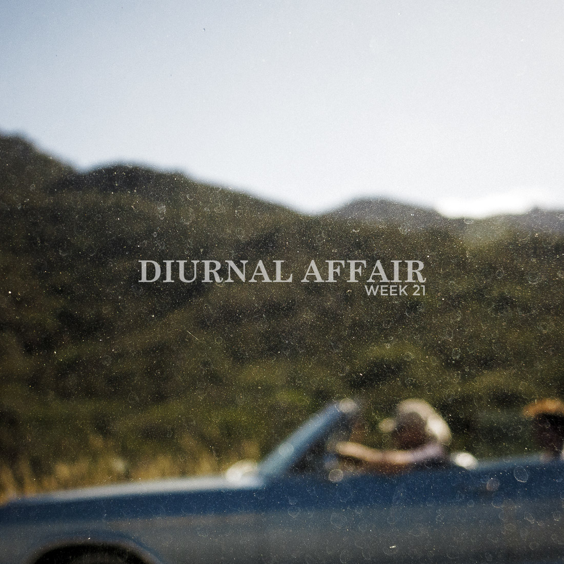 Diurnal Affair by David Bernie