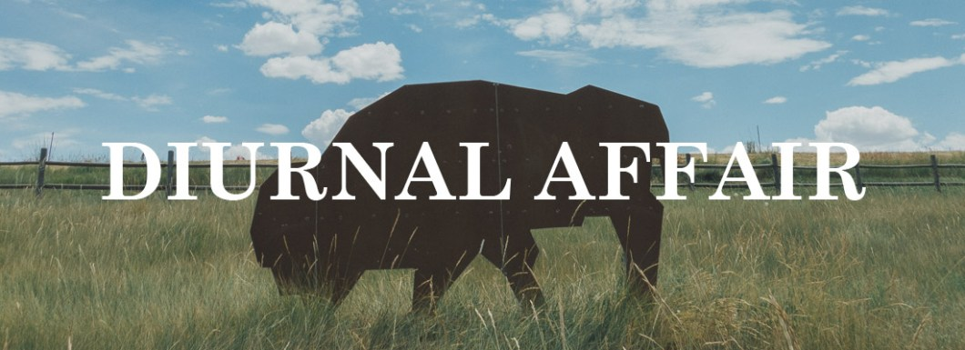 Diurnal Affair by David Bernie - Projects