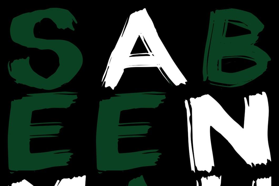 David Bernie Sabeen Mahmud Pakistani World News 15