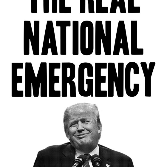 David Bernie Poster Print National Emergency Donald Trump Immigration Racism