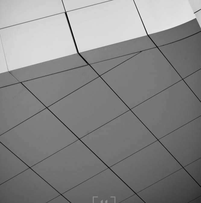 Daily Photographer – Day 104