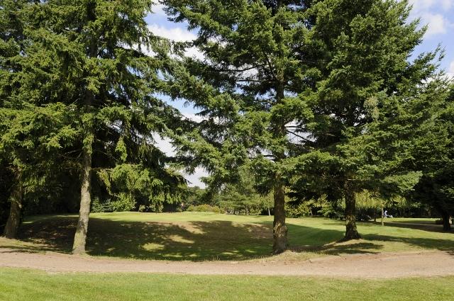 St Georges Hill Golf Club >> Woodcote Park Golf Club | David Brenes Photography