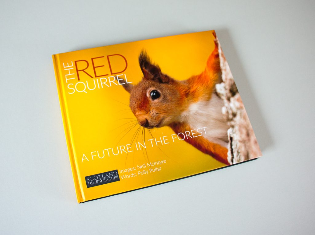 A photo of a copy of The Red Squirrel: A future in the forest, one of my completed book production projects