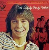 David Cassidy Discography Partridge Family Singles 3