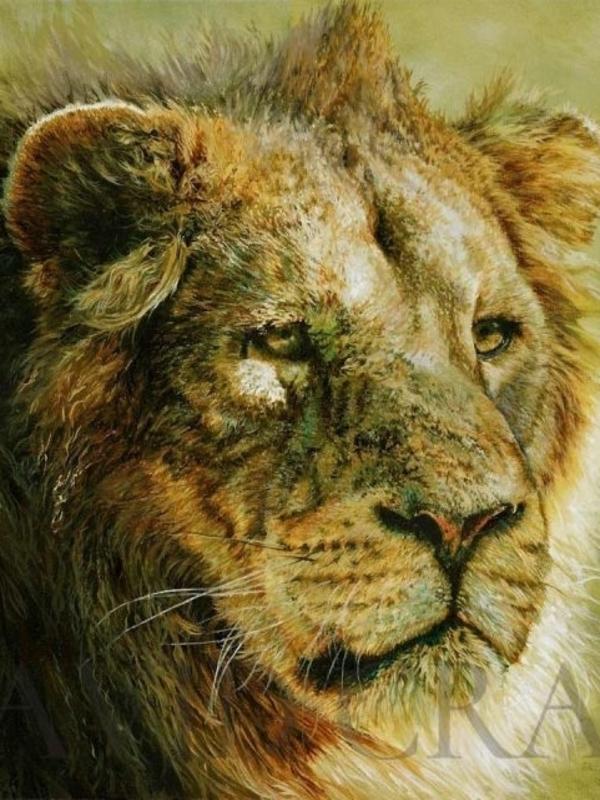 Nature Paintings & Wildlife