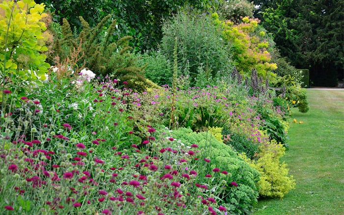 How To Plant A Herbaceous Perennial Border David Domoney