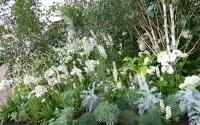 White garden: The best plants to create a white border