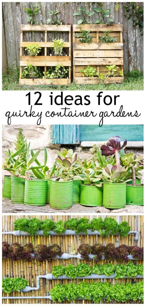 12 Ideas For Quirky Plant Containers To Jazz Up Your Garden