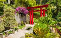 Design Ideas for a Japanese Garden - David Domoney