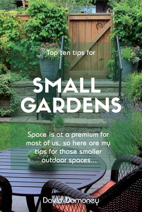 tips small garden design