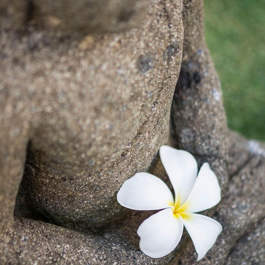 Hawaii Interior Photography