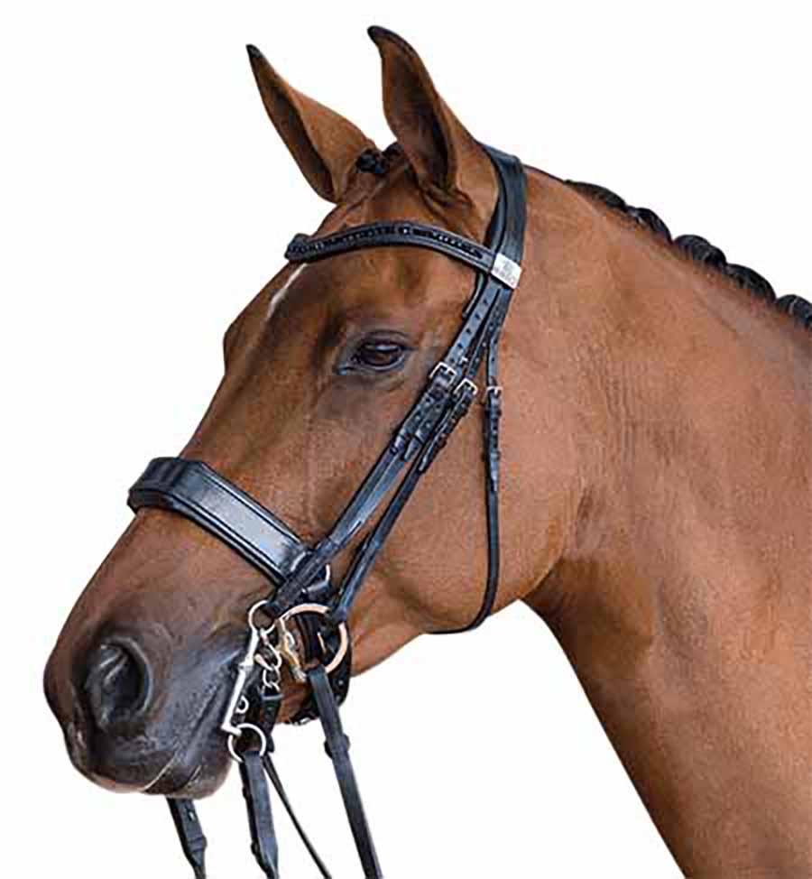 David Dyer Saddles  Fairfax Performance Double Bridle