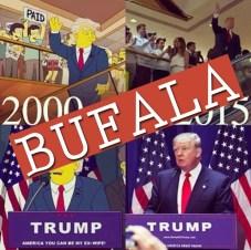 bufala_simpson