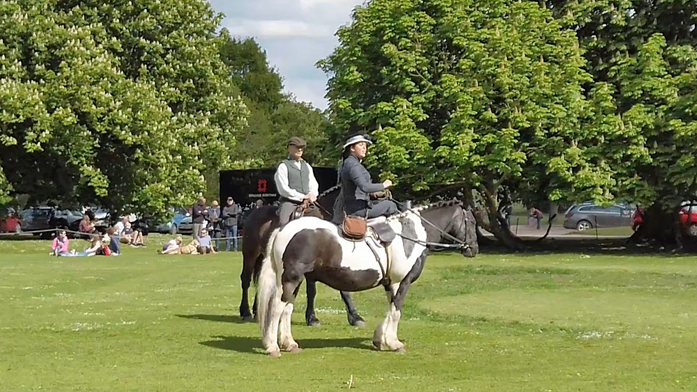 Audley End falconry from horseback
