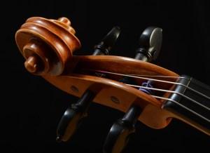 Viola Scroll by David Finck