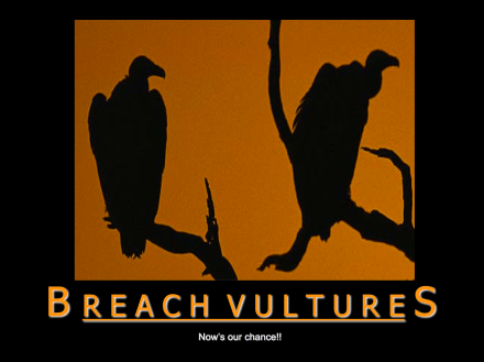 Breach Vultures