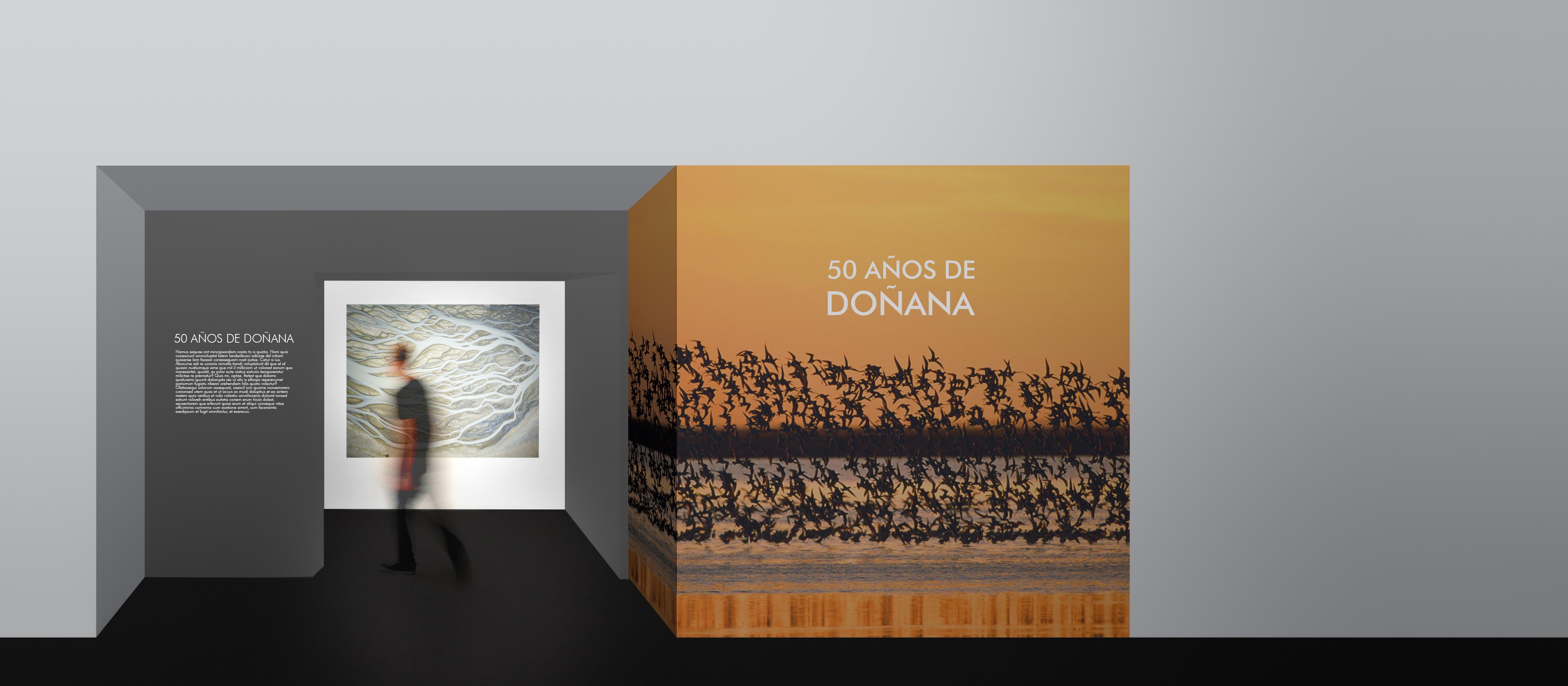 50 años de Doñana - David Guillén