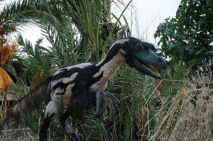 800px-Velociraptor-by-Salvatore-Rabito-Alcón