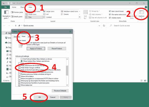 Confirm Folder Replace - figure 2