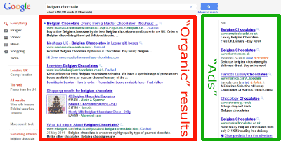 Google Search Results highlighting organic results and ads