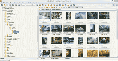 The main Faststone Image Viewer window, showing file and folder structure, and thumbnails of images in the selected folder