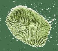 Multi Factor Authentication - fingerprints
