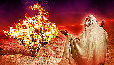 """Why God is """"I Am"""" (Exodus 3:11-14)"""