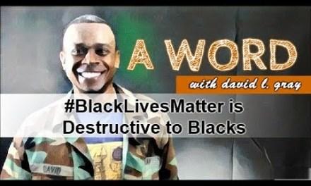 #BlackLivesMatter is Destructive to Blacks
