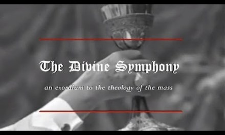 Introduction the Theology of the Catholic Mass (Protecting the Validity)