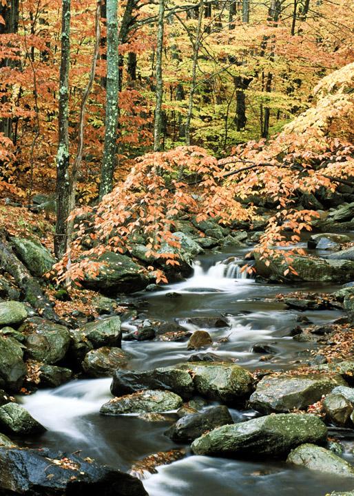fallstream