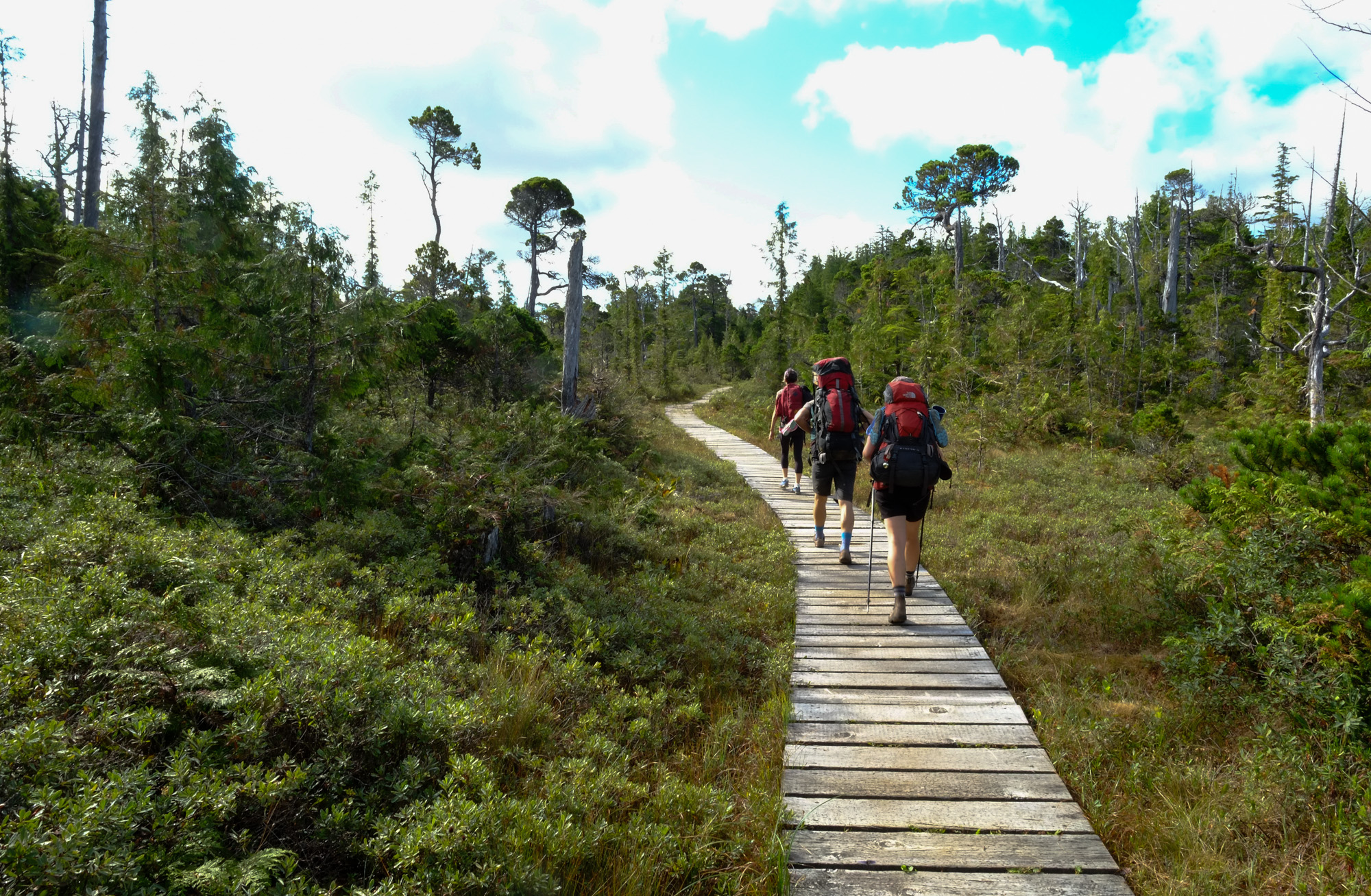 Cape Scott boardwalk hikers.
