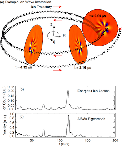 depiction of ion-wave resonance in a tokamak