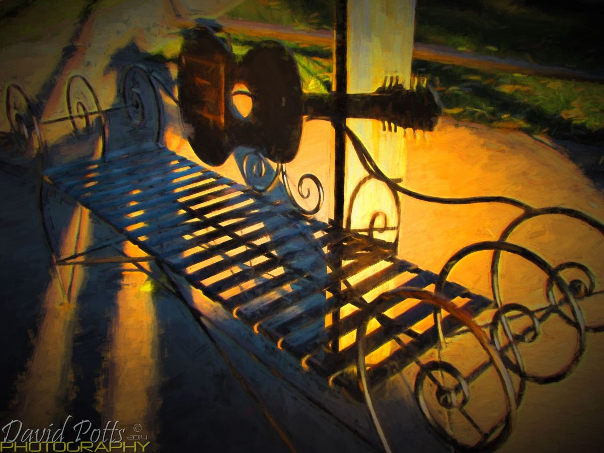 David Potts Photography Picking Park Bench