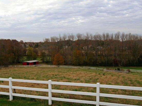 Mott landscape