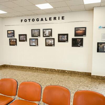 Nemocnice Litoměřice výstava David Surý Írán
