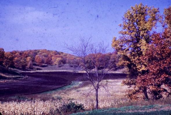 Autumn - Autumn Fields
