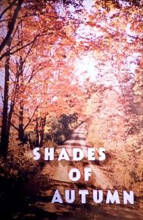 Autumn - Shades of Autumn