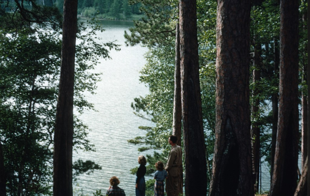 Minnesota – Preacher's Grove – Itasca State Park